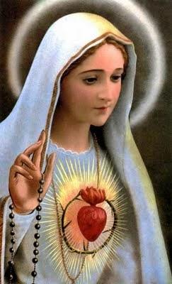 rosario diario por la vida y la familia fátima